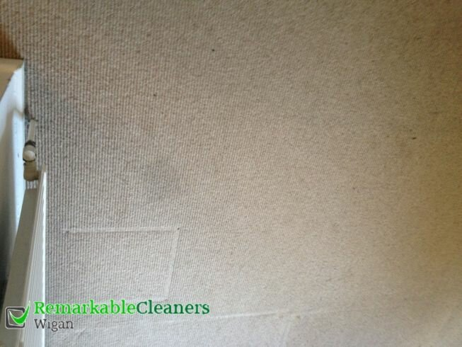 Remarkable Carpet Cleaning